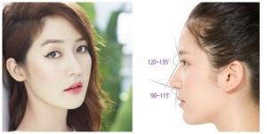 Phẫu thuật sửa mũi có chỉnh hình tổng thể không?
